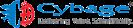 Addon Training Pune-cybage+software